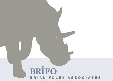 Brian Foley Associates Logo